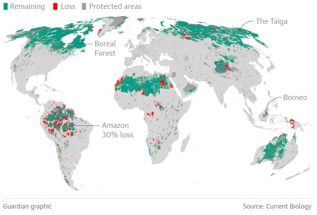 Change in the distribution of wilderness areas since the early 1990s